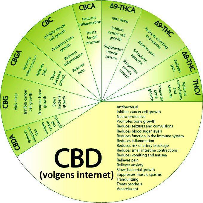 cbd-werking-voordelen-fibromyalgie-fibromyalgieblog