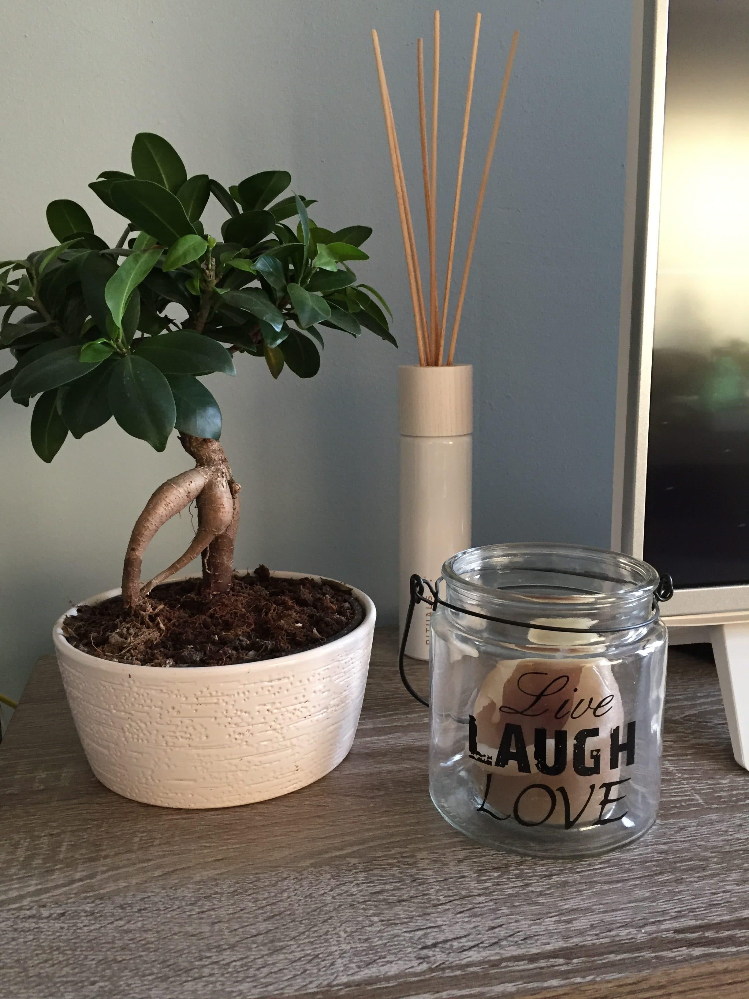 Zo haal je positiviteit in huis fibromyalgie blog - Decoratie gevel exterieur huis ...
