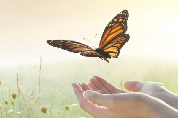 fibromyalgie accepteren - loslaten