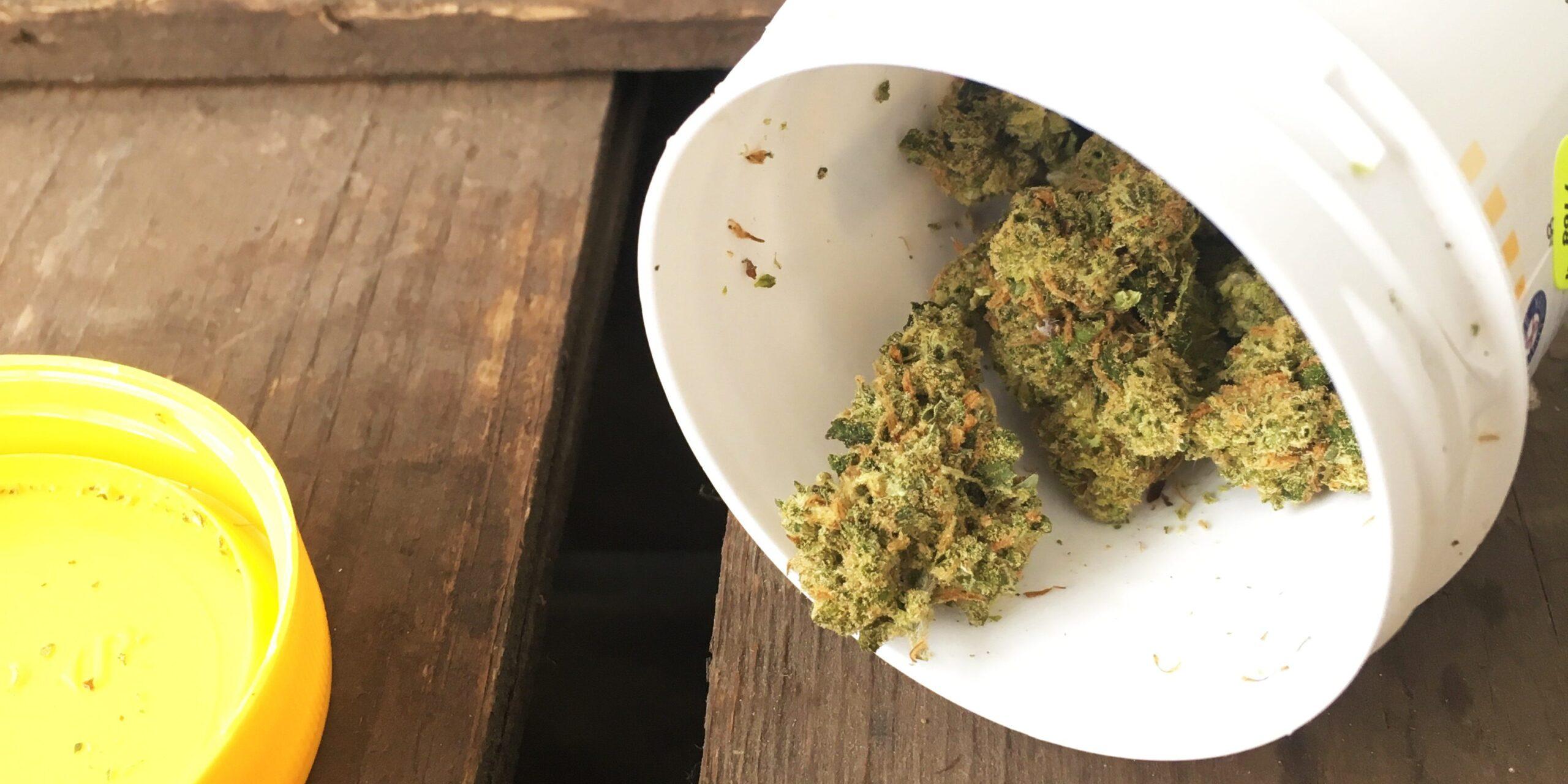 Medicinale cannabis - fibromyalgieblog-bew