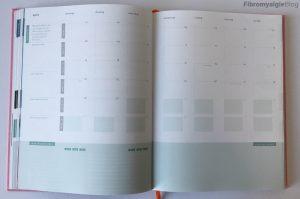 Purpuz planner - maand