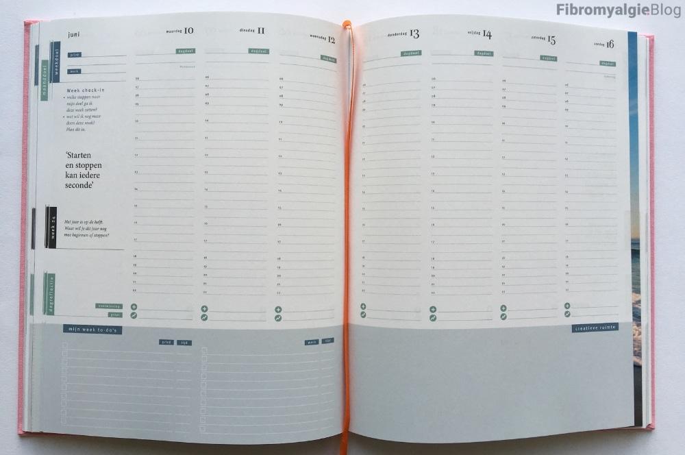 Purpuz planner - week